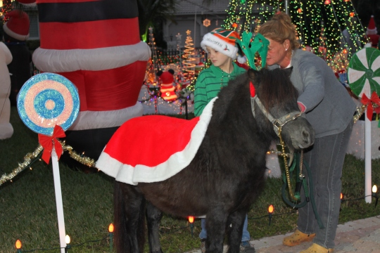 yofi reindeer