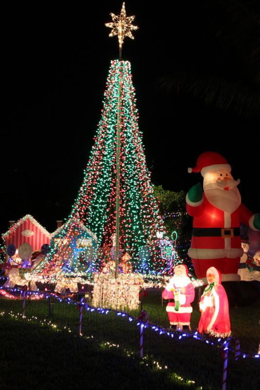 Mega Tree Shining Brightly with LED Technology 2013